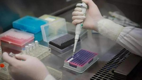 国产疫苗可以对付变异新冠吗