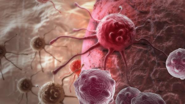 德尔塔病毒和新冠病毒的区别