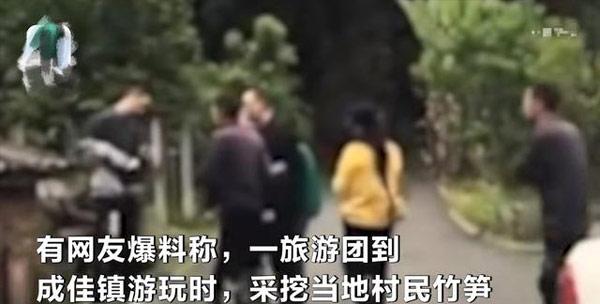 游客挖竹笋遭村民索赔1根1万