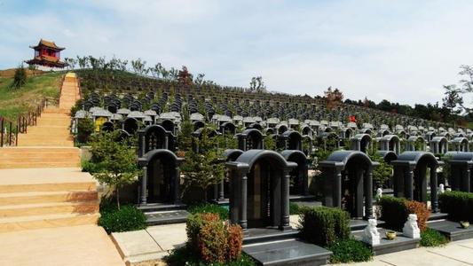 国家准备取消火葬是真的吗