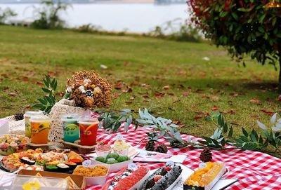 野餐快乐的句子