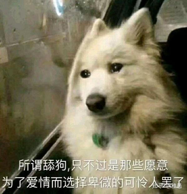 自嘲自己是舔狗的搞笑句子