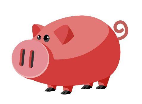 71年属猪51到52岁好运气