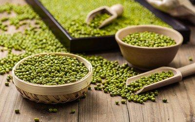 綠豆夏天怎麽保存