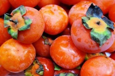 柿子会引起皮肤过敏吗