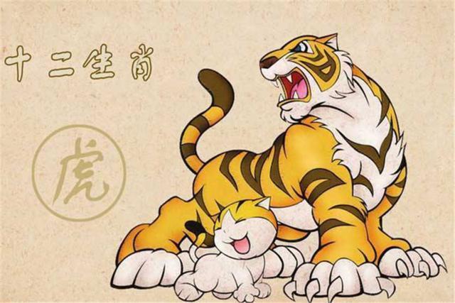 老人说属老虎的女孩不好