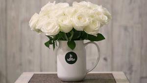 白玫瑰不能随便送人_送白色玫瑰忌讳吗