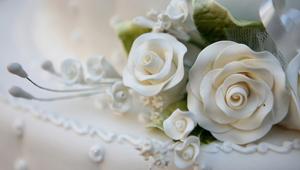 男生送女生白玫瑰什么意思_白玫瑰红玫瑰哪个才是爱